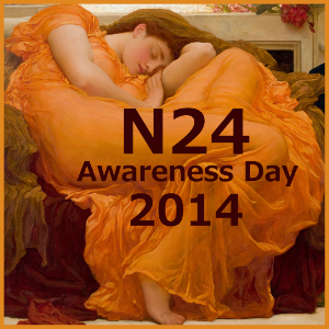 N24 Awareness Day 2014 icon